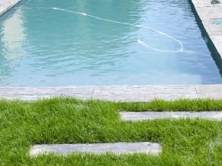 Allée en pierre sur la pelouse