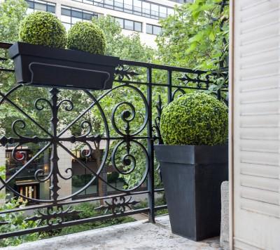 jardin contemporain gris photo id. Black Bedroom Furniture Sets. Home Design Ideas