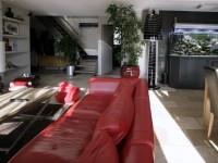 Canapé en cuir rouge avec table basse design