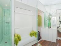 Espace douche, dressing, chambre et salon