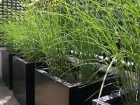 Grands bacs à plante en aluminium