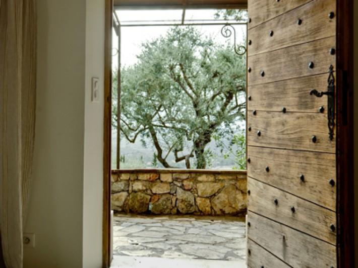 Olivier centenaire et murs en pierre