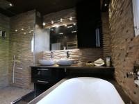 Salle de bain avec mur en pierre