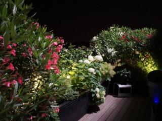 Terrasse avec hortensias blancs et lauriers roses et blanc