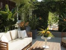 Aménagement jardin design  - DB design