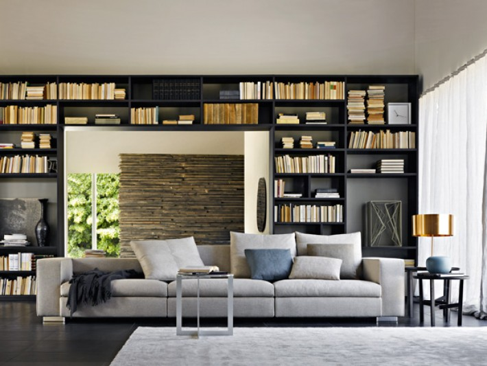 salon contemporain avec bibliotheque en bois noir