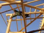 Les piliers de l'éco-construction