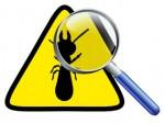 La déclaration en mairie des opérations d'incinération ou de traitement des bois et matériaux contaminés par les termites