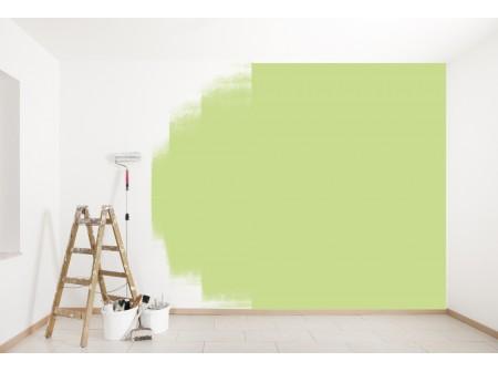 Prix de la peinture au m²