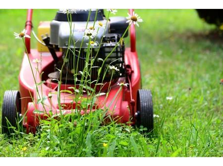 Comment bien choisir la tondeuse adaptée à son jardin ?