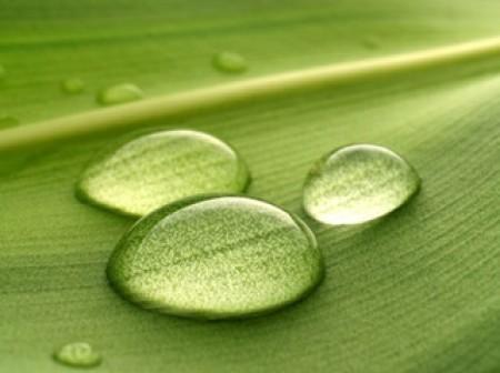 Economie d'eau: Réduire sa consommation d'eau