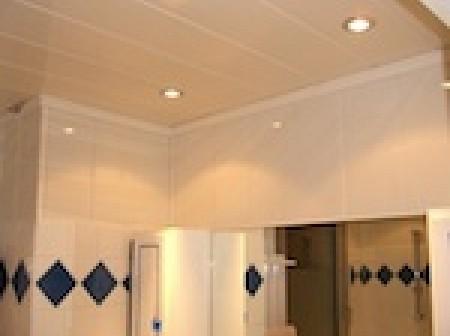 Le plafond PVC