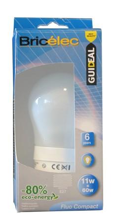 ampoule Bricelec 4
