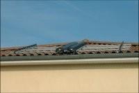 Installation sur le toit