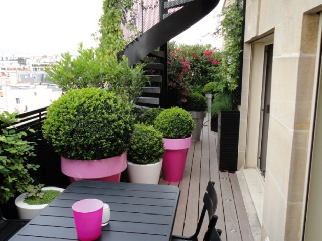 Pot design de plantes en Terrasse